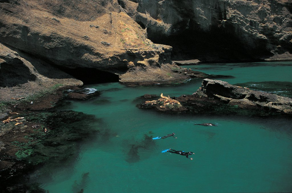 Santa Barbara Island snorkeling