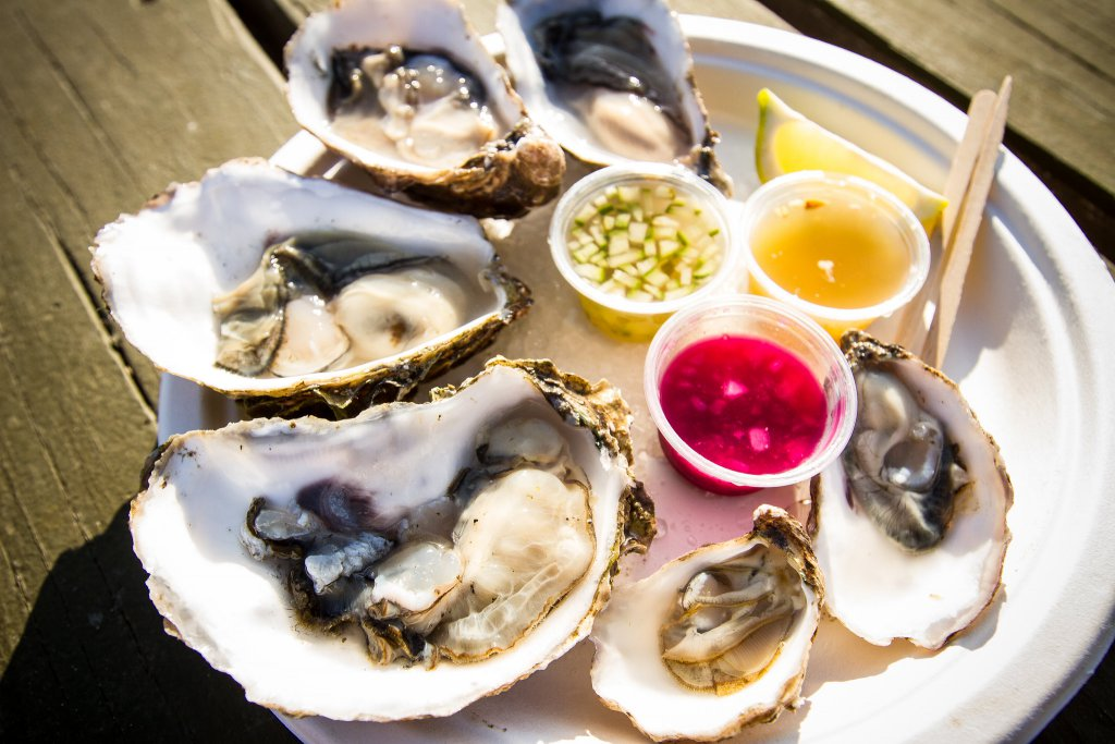 Jolly oyster