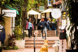 ventura jardin patio dog friendly shopping