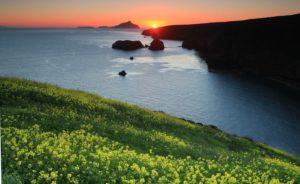 Santa Cruz Island Channel Islands Doug Magnum Ventura
