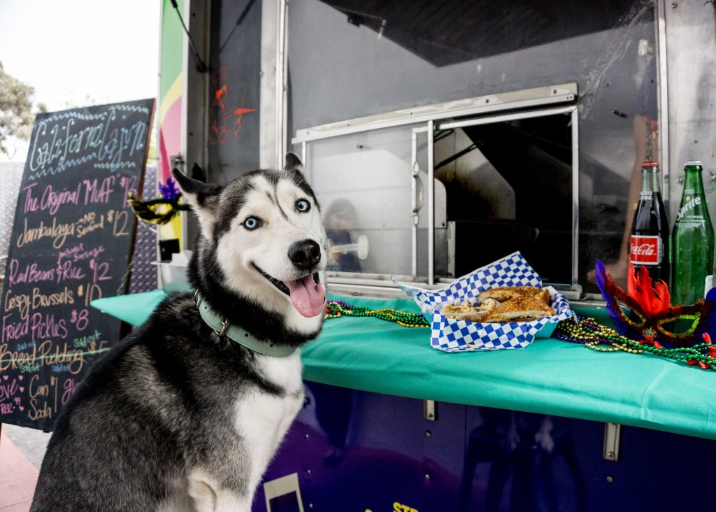 food truck with dog
