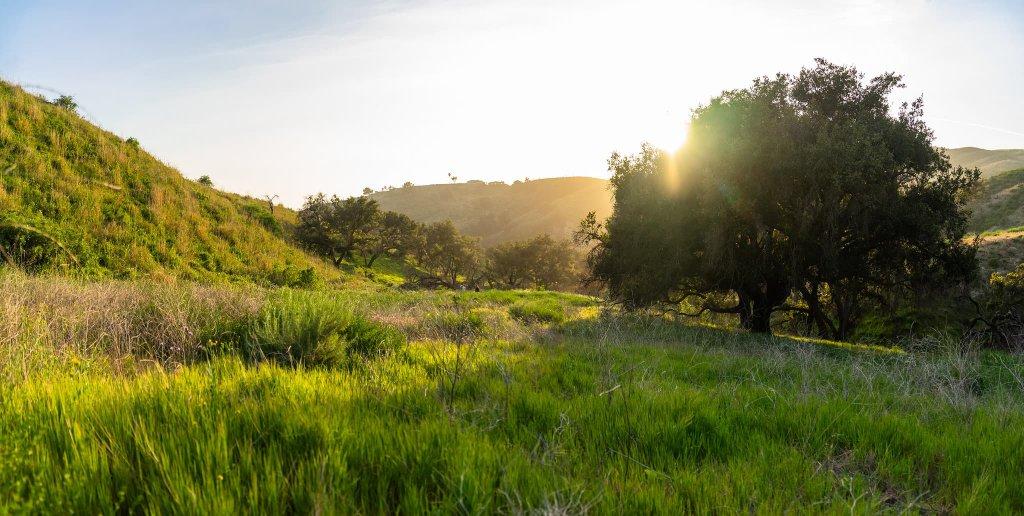 Harmon Canyon Ventura