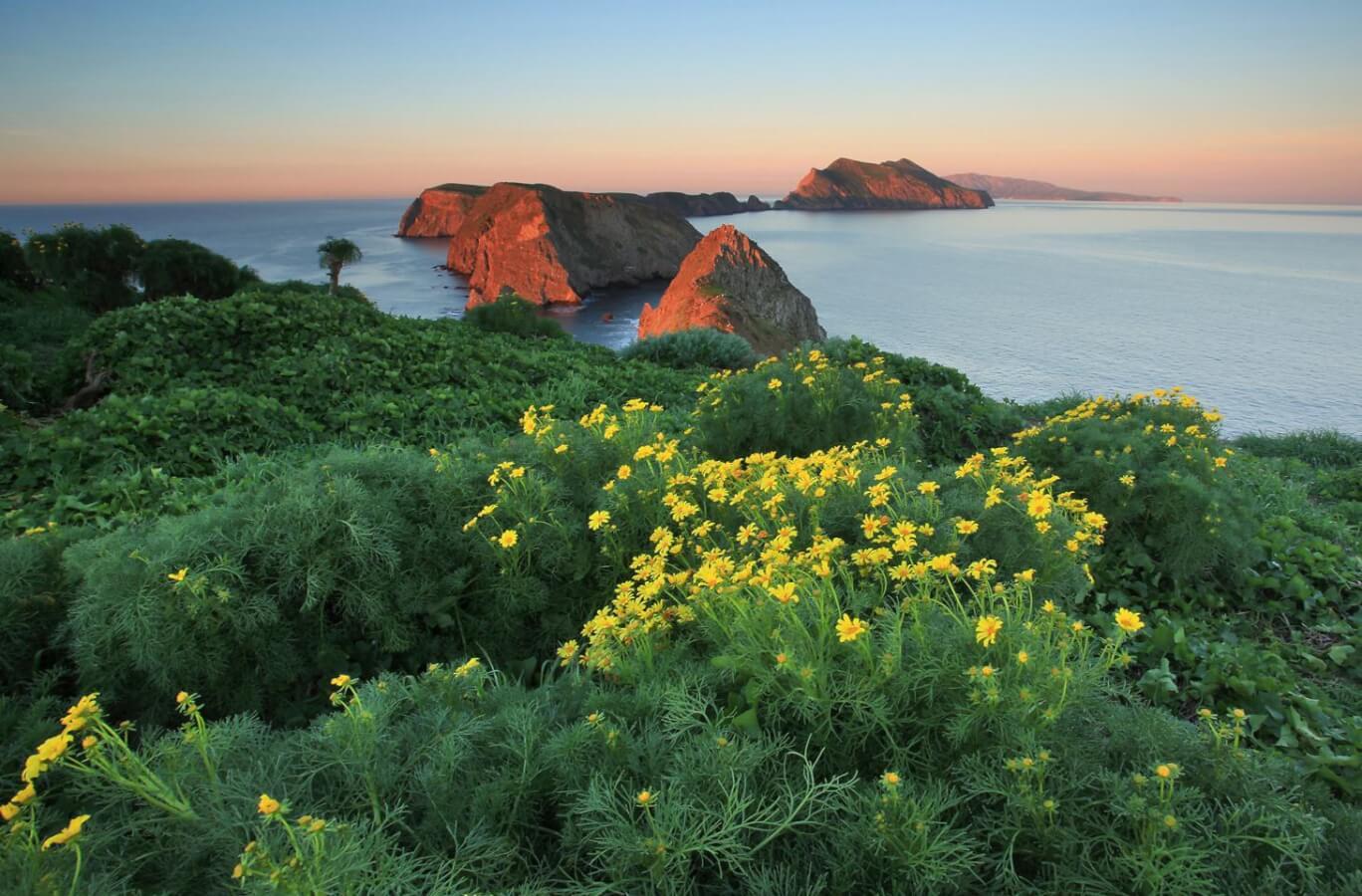 Anacapa island inspiration point